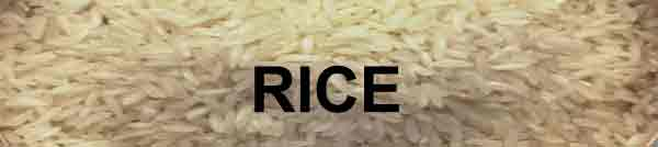 rice_600_150